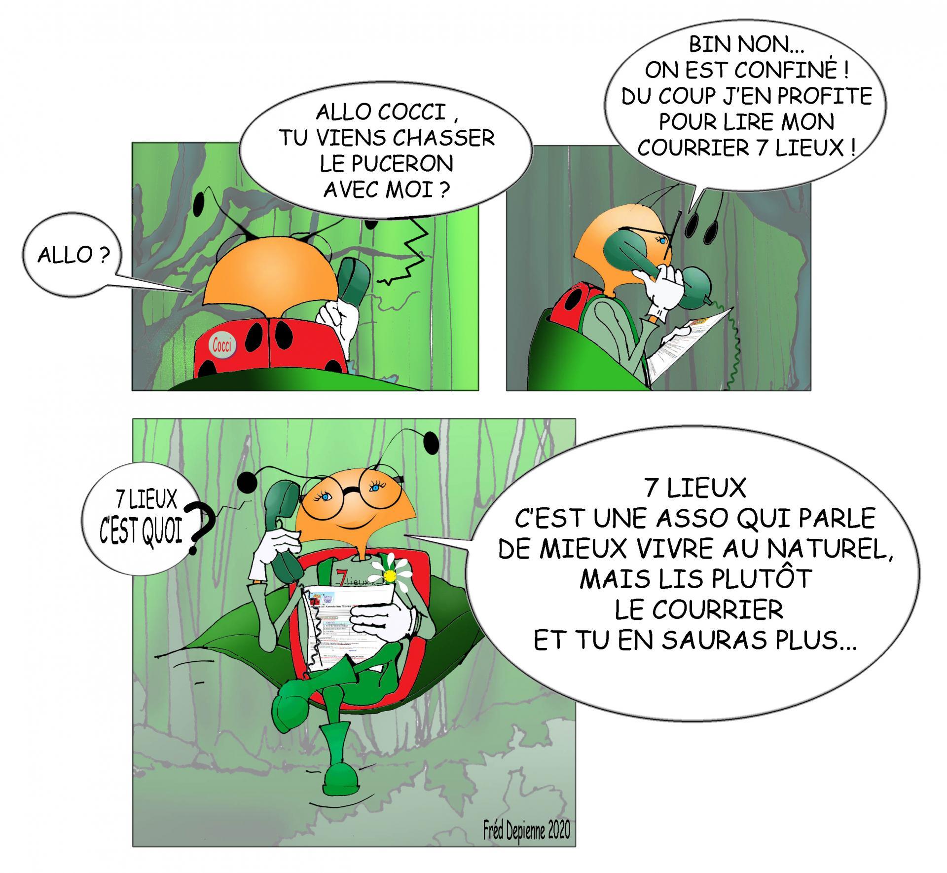 Cocci 7Lieux