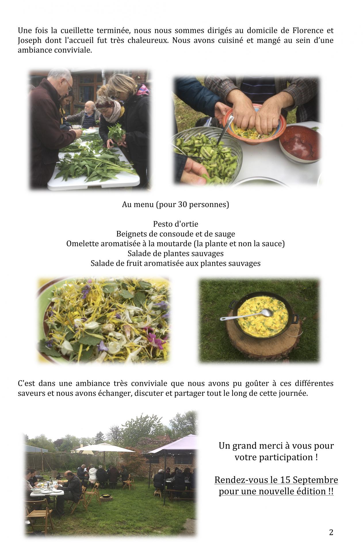 La journe e cueillette et cuisine de plante sauvages comestibles 2
