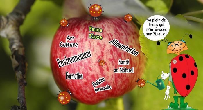 Pomme de garde 7lieux 1