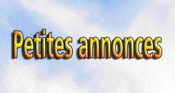 Ptes annonces blog