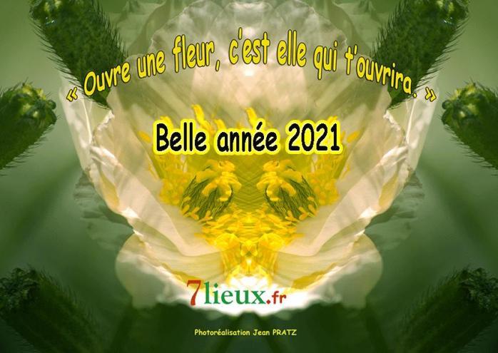 Voeuxfleur7lieux2021